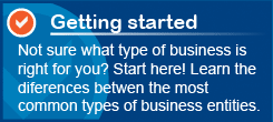 common types of business entities